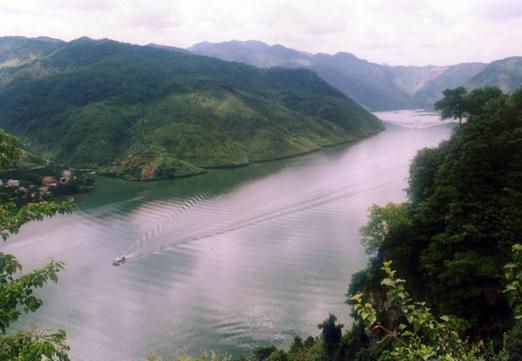 富阳四氯甲烷污染富春江